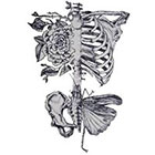 Ombeyond TEMPORARY TATTOO - Rose, Moth and Ribcage / Skeleton