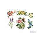 Pepper Ink vintage wildflowers pack - 6 floral temporary tattoos - lavender, calendula, cherry blossom, camellia