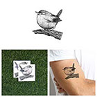 Tattify Perched - Temporary Tattoo Pack (Set of 2)
