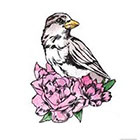 Pepper Ink Temporary Tattoo Bird