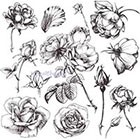 TattooNbeyond Temporary Tattoo - 13 Roses / Mixed Floral / Vintage Roses