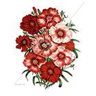 WildLifeDream Red flowers - Temporary Tattoos