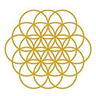 Royaltats Temporary Tattoo - Flower of Life - Metallic Temporary Tattoo - Summer Festival Trend - Bridal Accessories - Bachelorette Party- fake tattoo