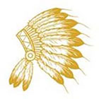 Royaltats American Indian Feather Headress - Metallic Temporary Tattoo -gold Tattoo Set of 12 Temporary Tattoos **Free Expedited Shipping **
