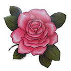 Lagoon House Pink Rose Hand DrawnTemporary Tattoo