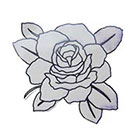 Lagoon House Medium BW Rose Hand Drawn Large Temporary Tattoo