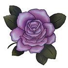 Lagoon House Lavender Rose Hand Drawn Large Temporary Tattoo