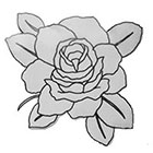 Lagoon House BW Rose Hand Drawn Large Temporary Tattoo