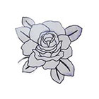 Lagoon House Small BW Rose Hand Drawn Temporary Tattoo