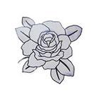 Lagoon House Small BW Rose Hand Drawn Temporary Tattoo