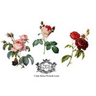 Wickedly Lovely Three Fine Art Roses, Vintage Fine Art Rose, floral tattoo, Body Art, Temporary Tattoo (includes 3 tattoos)