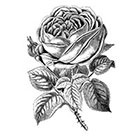 Taboo Tattoo Elegant Vintage Rose Temporary Tattoo, various sizes available