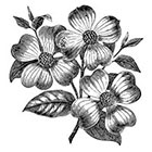 Taboo Tattoo 2 Vintage Dogwood Temporary Tattoo, various sizes available
