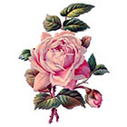 Taboo Tattoo 2 Vintage Roses Temporary Tattoo, various sizes available