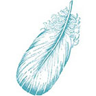 Taboo Tattoo 2 Vintage Feather Temporary Tattoo, various sizes available tribal china blue