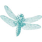 Taboo Tattoo 2 Vintage Dragonfly Temporary Tattoo, various sizes available