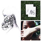 Tattify Paper Tiger - Temporary Tattoo Pack (Set of 2)