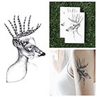 Tattify Headlights - Temporary Tattoo Pack (Set of 2)