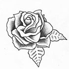 A Shine To It Rose Temporary Tattoo Classic Traditional Style Hand Drawn Illustration