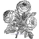 TattooNbeyond Temporary Tattoo - 13 Roses / Mixed Floral / Vintage Roses in