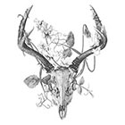 WildLifeDream Deer skull and flowers - Temporary tattoo