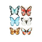 Taboo Tattoo 6 Watercolor Butterfly Temporary Tattoo, various sizes available Perfect for wrists fingers and ankles birthdays style 3
