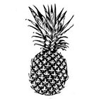 WildLifeDream Black or colorful Pinapple - Temporary tattoo