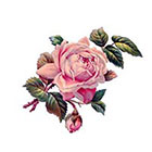 Arrow Tattoo Pink Vintage Rose temporary tattoo Pattern Tattoo Temporary Tattoo wrist ankle body sticker fake tattoo poppy red purple