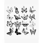 Taboo Tattoo Temporary Tattoo 2 Butterfly tattoo , various sizes available