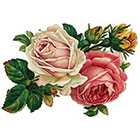 TattooNbeyond TEMPORARY TATTOO - Vintage Twin Rose