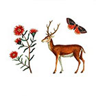 Arrow Tattoo 3 Vintage style Temporary Tattoo wrist ankle body sticker fake tattoo deer flower butterfly