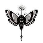 Atattood Moth Temporary Tattoo