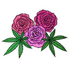Lagoon House Roses and Hemp Leaves Hand Drawn Large Temporary Tattoo