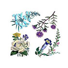Arrow Tattoo 4 Botanical Flowers temporary tattoo Pattern Tattoo Temporary Tattoo wrist ankle body sticker fake tattoo