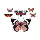 Arrow Tattoo 6 Butterflies temporary tattoos Pattern Tattoo Temporary Tattoo wrist ankle body sticker fake tattoo