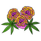 Lagoon House Yellow & Pink Roses and Hemp Leaves Hand Drawn Large Temporary Tattoo