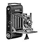 WildLifeDream Vintage camera - Temporary tattoo