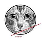WildLifeDream Vintage cat - temporary tattoo