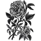 Ombeyond TEMPORARY TATTOO - 2 Size Vintage Roses