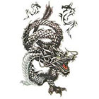 MyBodiArt Temporary Tattoo Sleeve , Dragon Tattoo, Arm, Sleeve, Japanese Dragon, Fake, Tribal, Large, Asian, Thai, Gangster, Thug, Triad