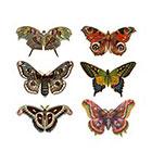 Arrow Tattoo Black Friday SALE Set of 6 Vintage Butterflies Tattoo Pattern Tattoo Temporary Tattoo wrist ankle body sticker fake tattoo