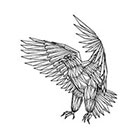 Tattoocrew Includes 2 tattoos: handmade Eagle temporary tattoo, eagle temporary tattoo, wings, wings, handpainted, handmade, exclusive