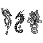 TattooGirlsRule 3 Chinese Dragon Temporary Tattoos (#SERP501)