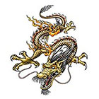 TattooGirlsRule Chinese Dragon Temporary Tattoo (#BC561)