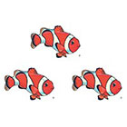 TattooGirlsRule 3 Clown Fish Temporary Tattoos (#D361_3)