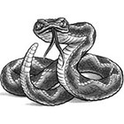 TattooGirlsRule Rattlesnake Temporary Tattoo (#DB516)