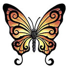 TattooGirlsRule Brown Butterfly Temporary Tattoo (#BC501)
