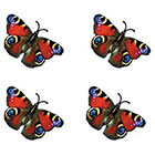 TattooGirlsRule 4 Colorful Butterfly Temporary Tattoos (#D411_4)