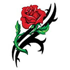 TattooGirlsRule Large Tribal Red Rose Temporary Tattoo (#VS444)