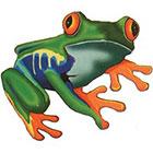 TattooGirlsRule Green Coqui Tree Frog Temporary Tattoo (#TH520)